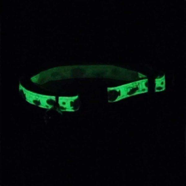 Coastal Collar Fosforecente Glow in the Dark Butterfly